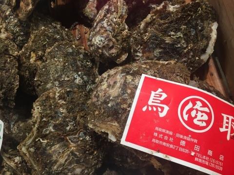 鳥取港海鮮産物市場かろいち  若林商店 ご馳走空間_e0115904_21513810.jpg
