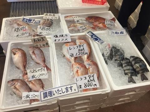 鳥取港海鮮産物市場かろいち  若林商店 ご馳走空間_e0115904_22160366.jpg
