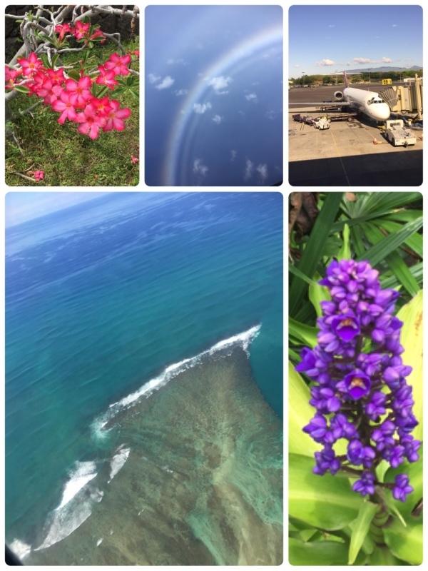 ハワイ島へ1泊^ ^_c0196240_17570609.jpg