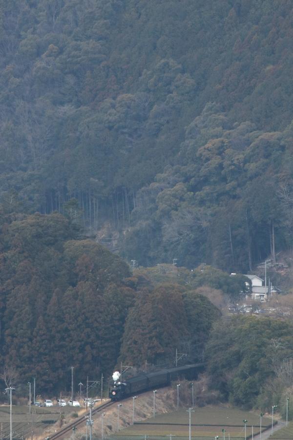 ぽっ - 2017年・大井川 -_b0190710_22301836.jpg
