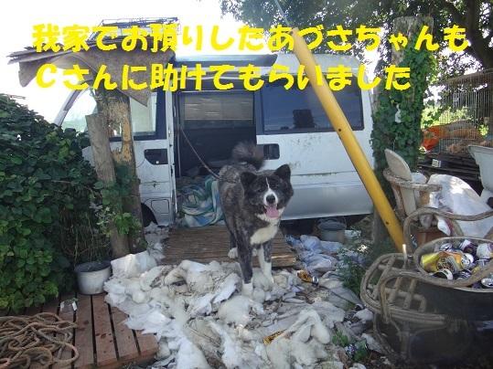 f0121712_08100031.jpg