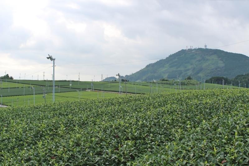 粟ヶ岳から_b0220318_09175779.jpg