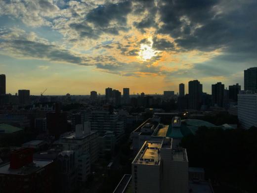 展覧会&打合せのため東京まで!!_f0165030_12222335.jpg