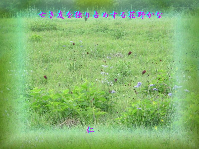 e0017651_15543148.jpg