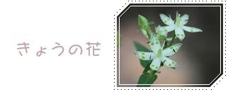 f0146493_22355110.jpg