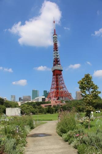 青空の下、芝公園を散策する・5_c0075701_05430463.jpg