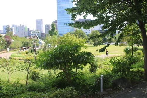 青空の下、芝公園を散策する・6 完_c0075701_05512263.jpg