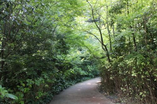 青空の下、芝公園を散策する・6 完_c0075701_05520599.jpg