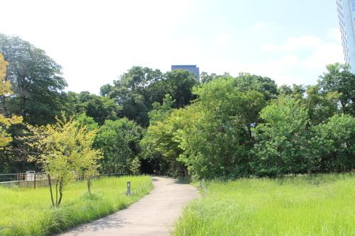 青空の下、芝公園を散策する・6 完_c0075701_05523639.jpg