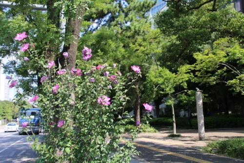 青空の下、芝公園を散策する・6 完_c0075701_05544238.jpg