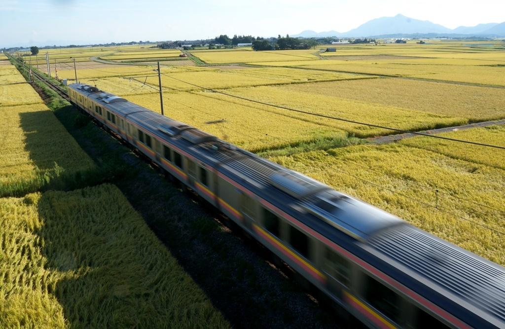 日本有数の穀倉地帯 : いちげに...