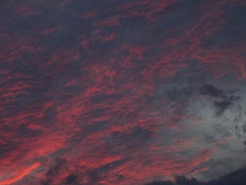 「ウミホタルウオッチング」・・・せんなん里海公園淡輪海水浴場_c0108460_01173671.jpg
