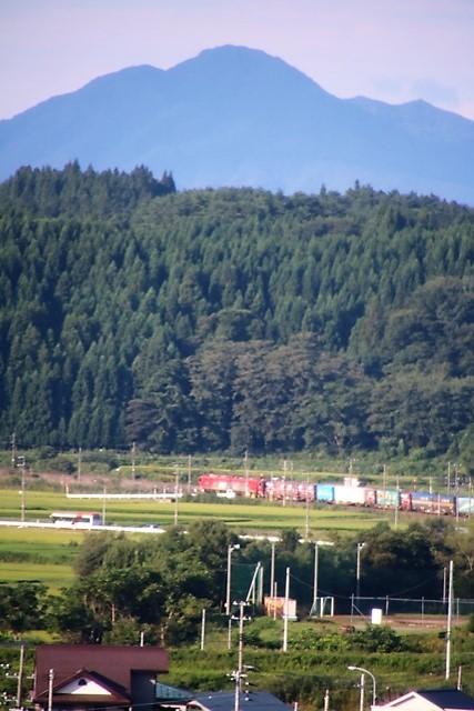 藤田八束の鉄道写真@山裾のを走る貨物列車金太郎を東横インから撮影・・・東北本線・青い森鉄道_d0181492_21301904.jpg