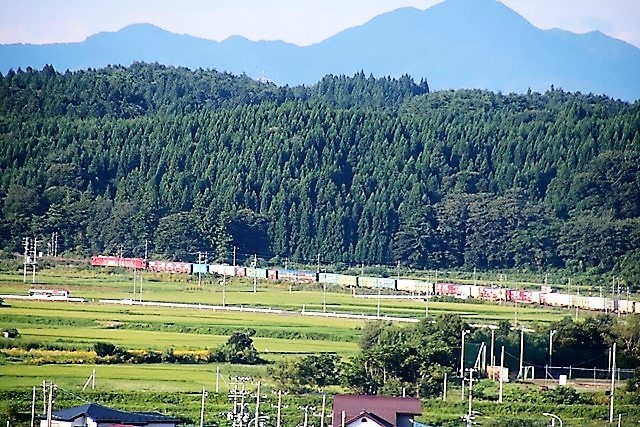 藤田八束の鉄道写真@山裾のを走る貨物列車金太郎を東横インから撮影・・・東北本線・青い森鉄道_d0181492_21303398.jpg