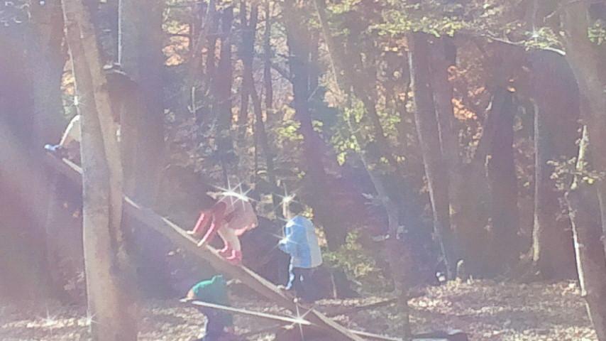 親と子の森の創造療法_f0006208_15270592.jpg