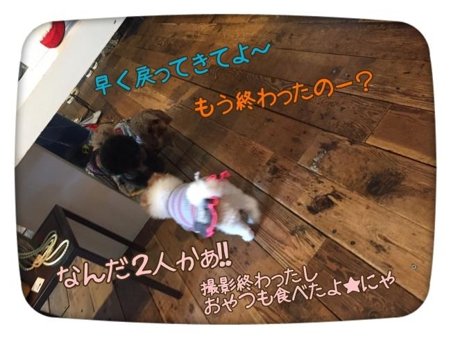 f0170910_16551140.jpg