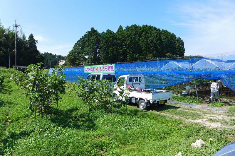 「むあ文庫」さん 「なかお農園」さん (滋賀県大津市、甲賀市)_d0108737_13370172.jpg