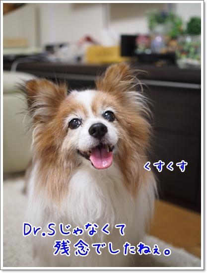 d0013149_00000461.jpg