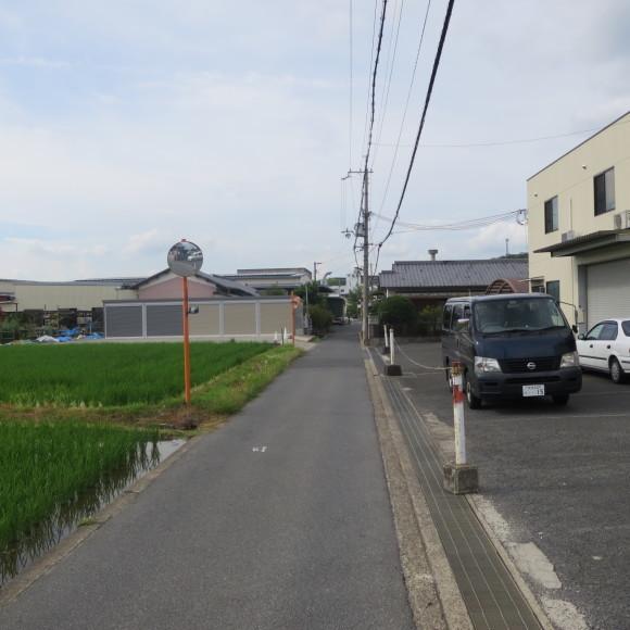秋篠から歌姫の三角へ_c0001670_19371972.jpg
