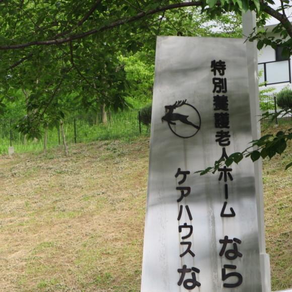 秋篠から歌姫の三角へ_c0001670_19445217.jpg