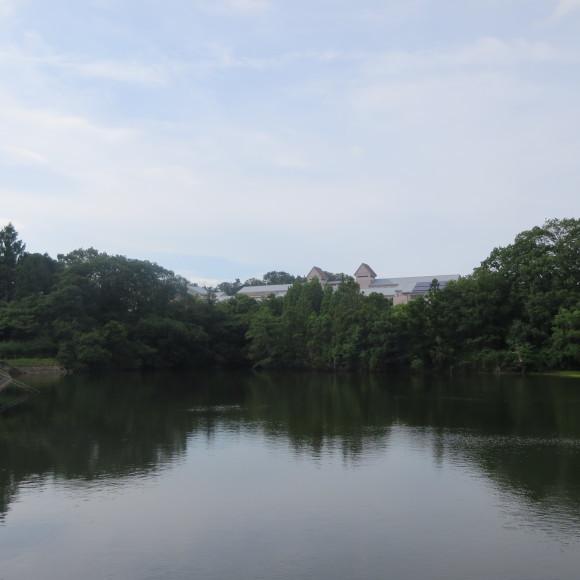 秋篠から歌姫の三角へ_c0001670_19480251.jpg