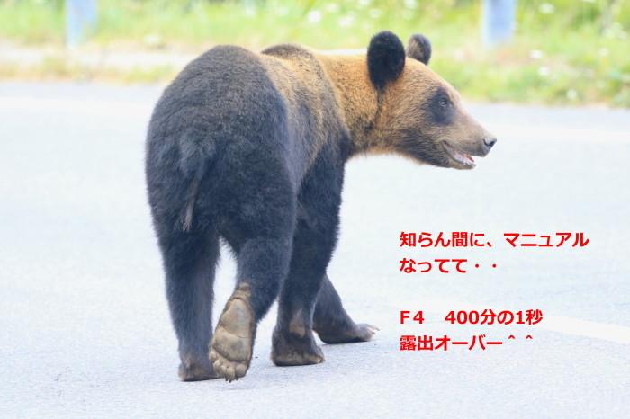 c0229170_12440286.jpg