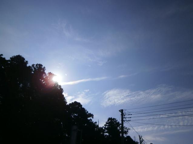 お空へ・・・・_e0135287_15260312.jpg