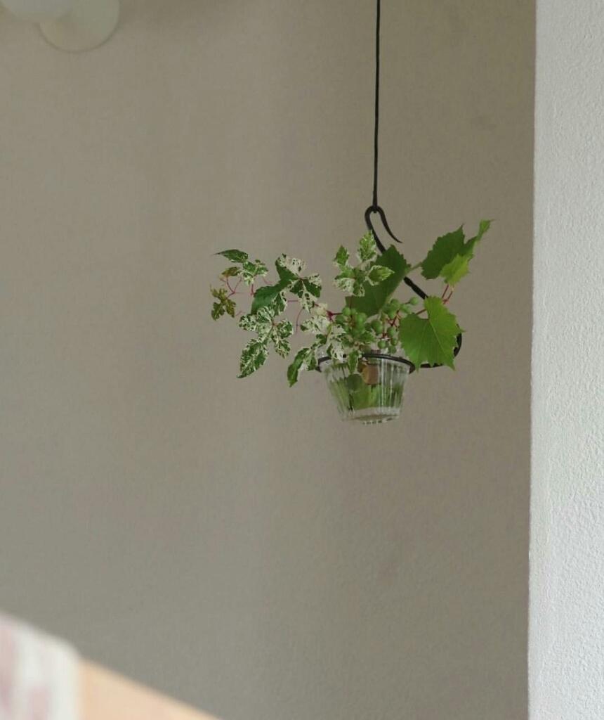 吊り花器 その2_d0065820_23472944.jpg