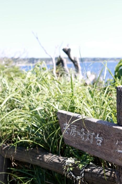 【県立 城ヶ島公園】_f0348831_20294679.jpg