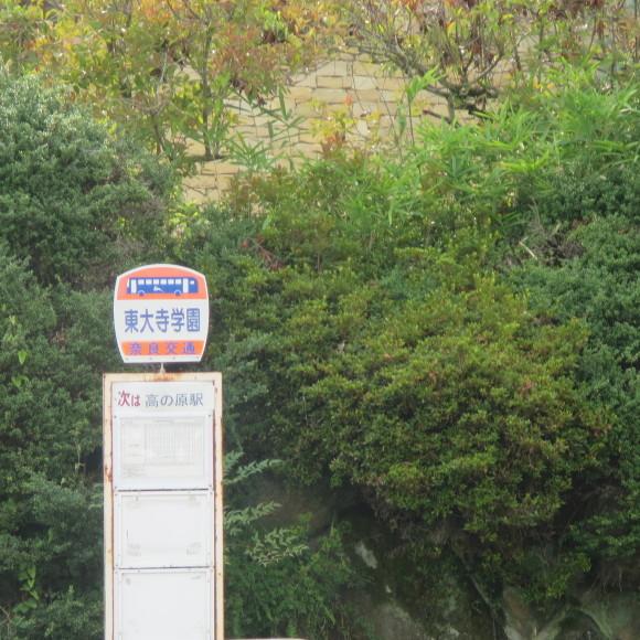 津風呂最近の話 奈良_c0001670_20465647.jpg