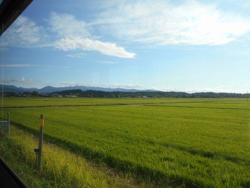 真夏の北日本海鉄道 6 (五能線)_b0005281_21551466.jpg