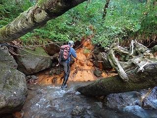 大滝と苔むした原生林の沢(乗鞍岳久手御越谷)_e0064783_21083342.jpg