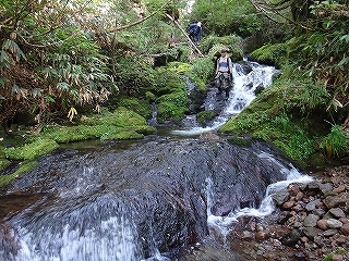 大滝と苔むした原生林の沢(乗鞍岳久手御越谷)_e0064783_21091475.jpg