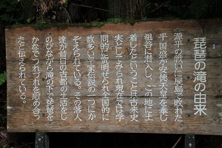 祖谷渓(いやけい)_c0313595_17401790.jpg