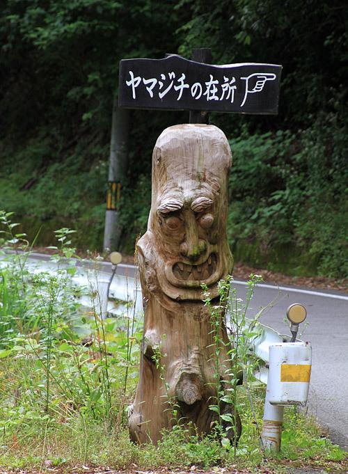 祖谷渓(いやけい)_c0313595_18192969.jpg