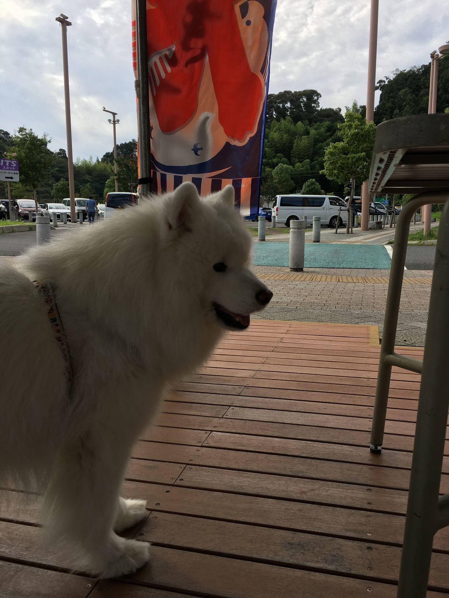 2017年秋 宮城~福島旅行 その1_f0128542_01345409.jpg