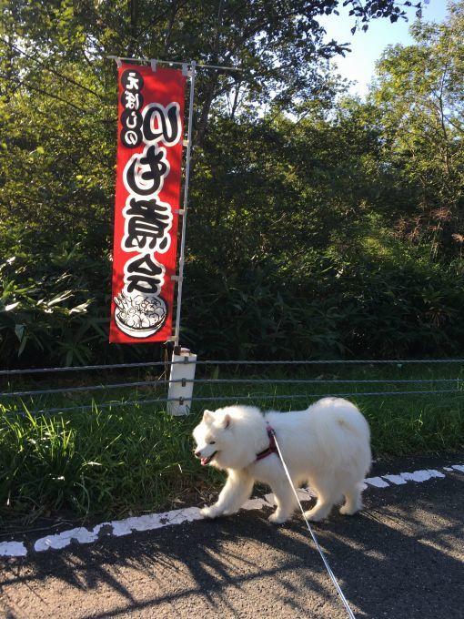 2017年秋 宮城~福島旅行 その1_f0128542_02064004.jpg