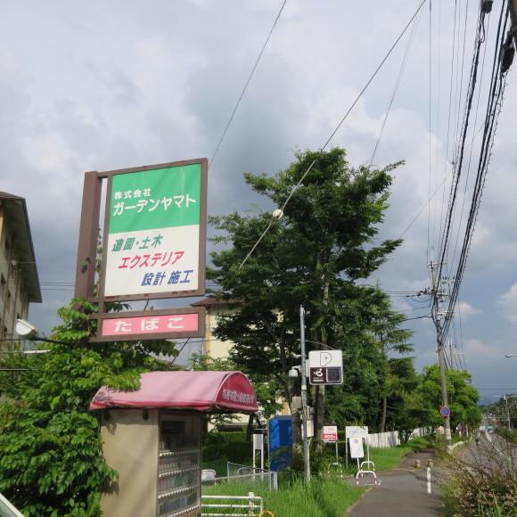 歌姫の△´は平城の2号 奈良_c0001670_21183950.jpg