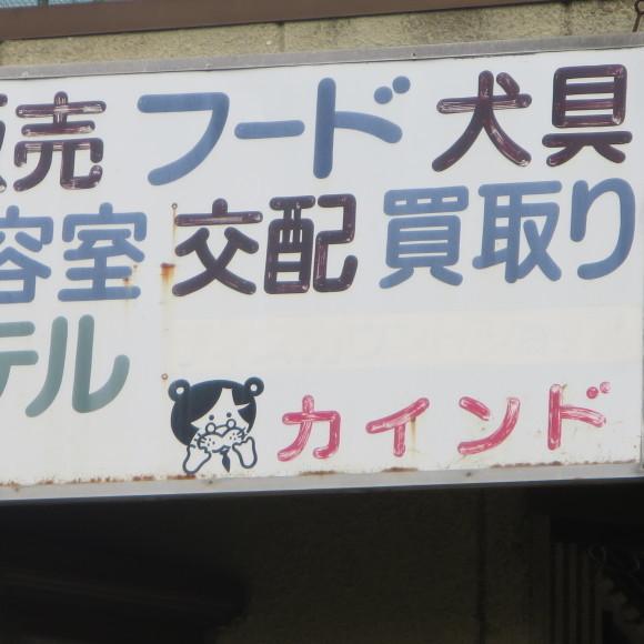 歌姫の△´は平城の2号 奈良_c0001670_21472586.jpg