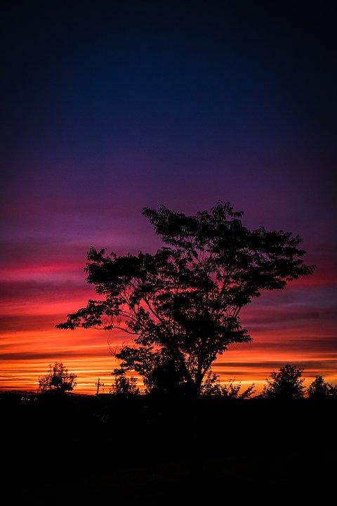 朱から紫へ変わる空_d0353489_19144332.jpg