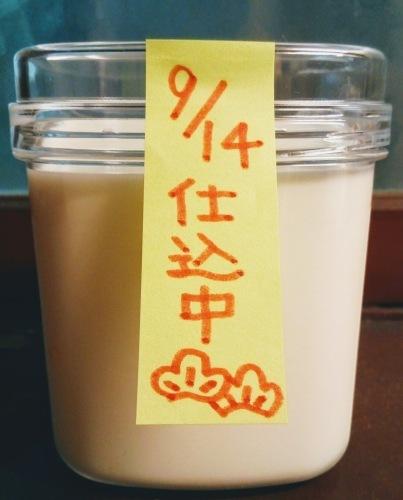 【RSP59】太田胃散 王様のヨーグルト種菌 出来上がり編_a0057402_21014128.jpg