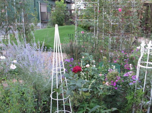 秋の庭(2)_a0243064_12310797.jpg