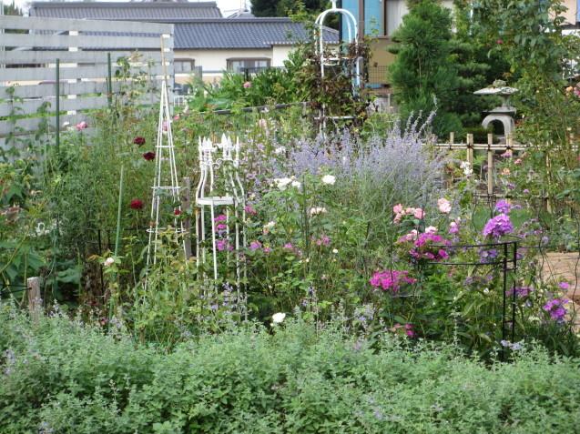 秋の庭(2)_a0243064_12510196.jpg