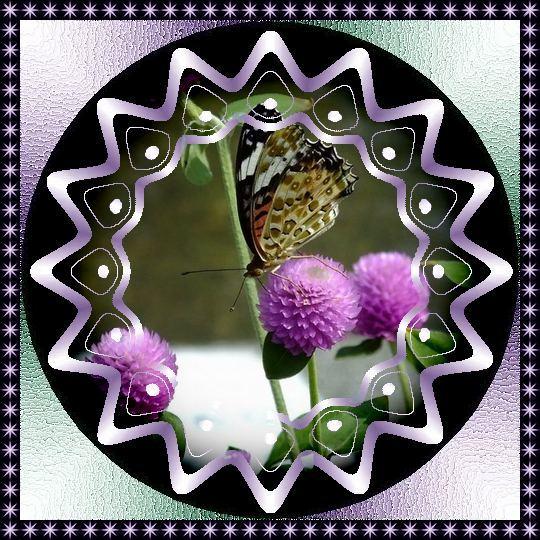 f0132006_10552606.jpg