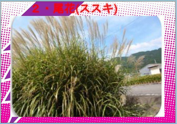f0363122_06301676.jpg