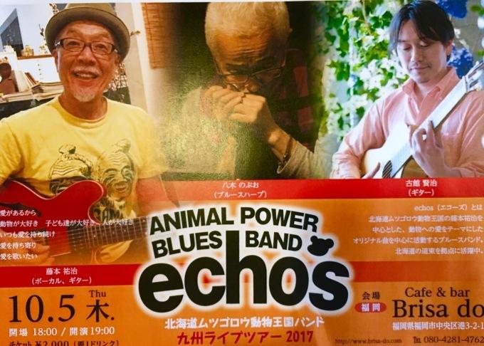 北海道ムツゴロウ動物王国ブルースバンド★《echos》LIVEのお知らせ_d0168331_15071226.jpg