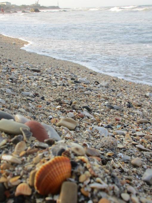 マハチカラの海岸 : Krasivoe-De...