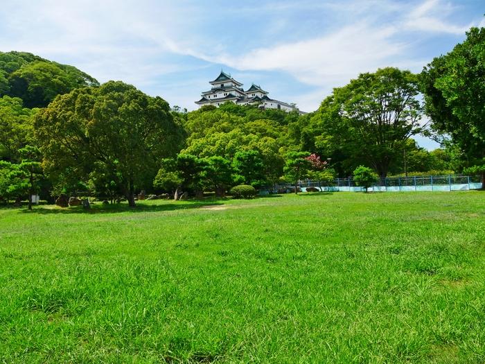 和歌山城・天守閣とサルスベリ_b0093754_221641100.jpg