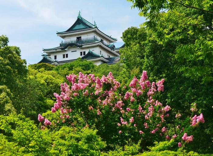 和歌山城・天守閣とサルスベリ_b0093754_2216504.jpg
