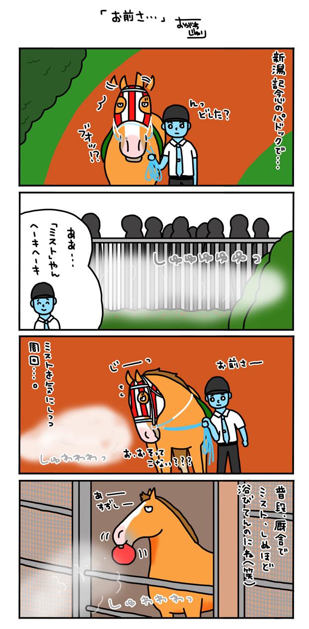 新潟記念のパドック_a0093189_13505532.jpg